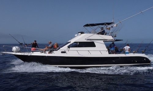 Charter Boats in Tenerife